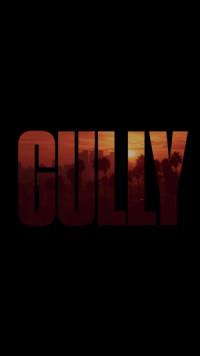 Gully poster
