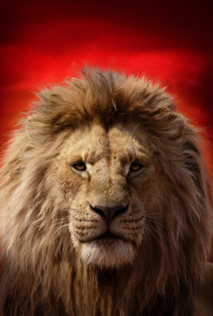 The Lion King 3376x5000