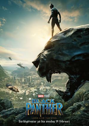 Black Panther 2480x3508
